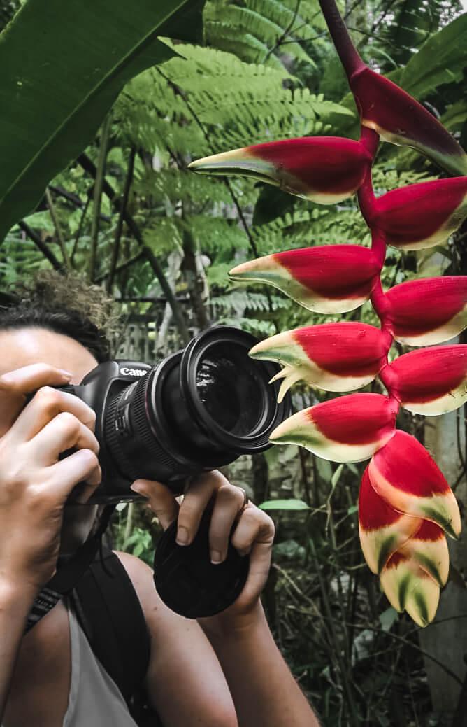 Nadine Normann fotografiert Ameisen auf Pflanze
